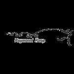 klant raymondkoop